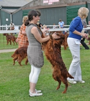 Tosca first in Limit Class at Joint ISC 2011, judge Mrs Lynn Muir, UK