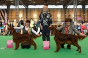 Best bitch at Crufts 2012, judge: Eva Ciechonska, UK