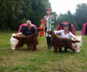 ISF Herrfallet 2015 Tosca BOS with son Copper's Magiska Under BIS, judge: Kasia Czapla, Poland