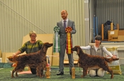 ISF Boxholm 2012 Tosca BOB with son Copper's Magiska Under BOS, judge: Blake Crocker, UK