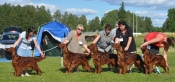 Toscas Progeny group at ISF Kungsbyn 2012