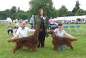 Tosca winning her second CC at Leeds 2013, judge: Mrs P Smith, UK